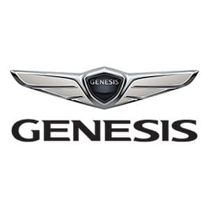 Genesis Touch Up Paint