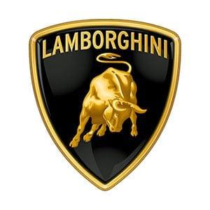 Lamborghini Touch Up Paint