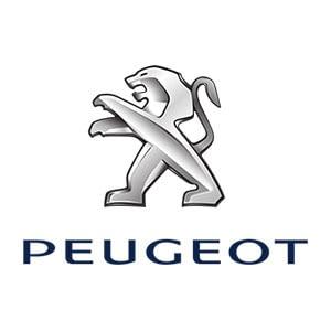 Peugeot Touch Up Paint
