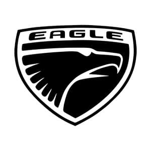 Eagle Touch Up Paint