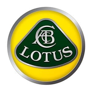 Lotus Touch Up Paint