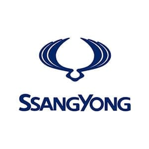 SsangYong Touch Up Paint